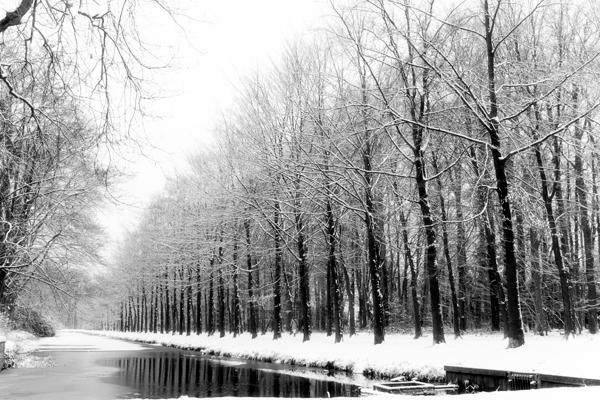 Sneeuwsmall1